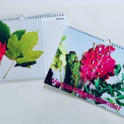 Verjaardagskalender met natuurstillevens in kleur